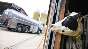 Landwirte fordern mehr Geld für Milch und Fleisch