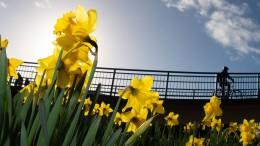 Der Frühling kommt – aber nicht sehr lange