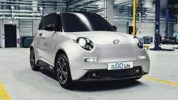 """""""Das Elektroauto ist ein Nischenfahrzeug"""""""