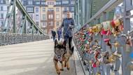 Hund zieht Frau: Harmke Horst und Esra verfolgen eine gelegte Spur auf dem Eisernen Steg in Frankfurt.
