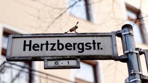Josef Foos - Der Berliner Künstler und Yoga-Lehrer schmückt Berliner Strassenschilder mit aus Kork selbst gefertigten Street-Yoga-Figuren.