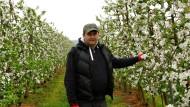 EU bringt Polens Bauern Modernisierung