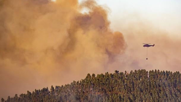 Verheerender Waldbrand im Südwesten Spaniens