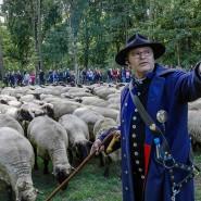 Fordert besseren Herdenschutz statt den Abschuss von Wölfen: Knut Kucznik
