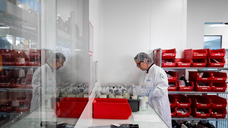 Im Labor: Produktion homöopathischer Mittel in Lyon