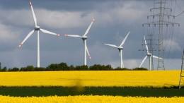 Deutschland erreicht Ökostrom-Rekord