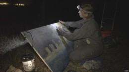 Künstlerin der Nacht