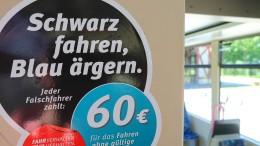 Heinz gegen Mainz, Strafbarkeit Schwarzfahren, Innenansicht NetzDG