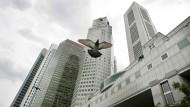 Vogelflug in Singapur