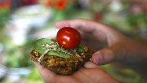 Ernährungsminister warnt vor veganer Ernährung bei Kindern