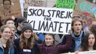 Greta Thunberg demonstriert in Berlin mit vielen anderen Schülerinnen und Schülern für den Klimaschutz.