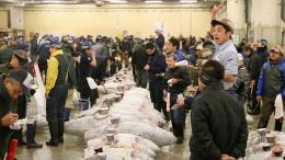 Thunfisch für fast 300.000 Euro