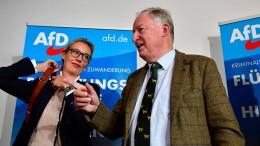 """""""Die AfD wird sich zerlegen"""""""
