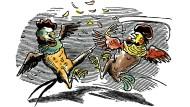 Hohes G-Moment: Zwei Gockel beim Streiten