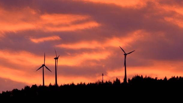 Wie Windräder die Umwelt zerstören