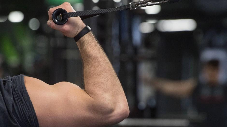 Fitnessstudio in Stuttgart: Wer ist der Stärkste im ganzen Ländle?