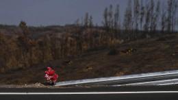 Portugals schwieriger Neustart nach den Waldbränden