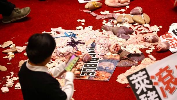 Schweine-Schlacht im Parlament von Taiwan