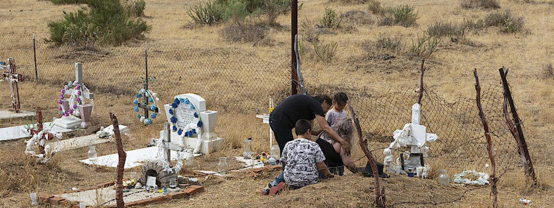 227 Aktivisten starben 2020 im Kampf für die Natur