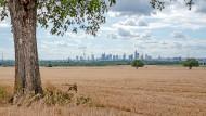 Allein der schöne Blick auf die Frankfurter Skyline wird die Standortwahl nicht entscheiden.