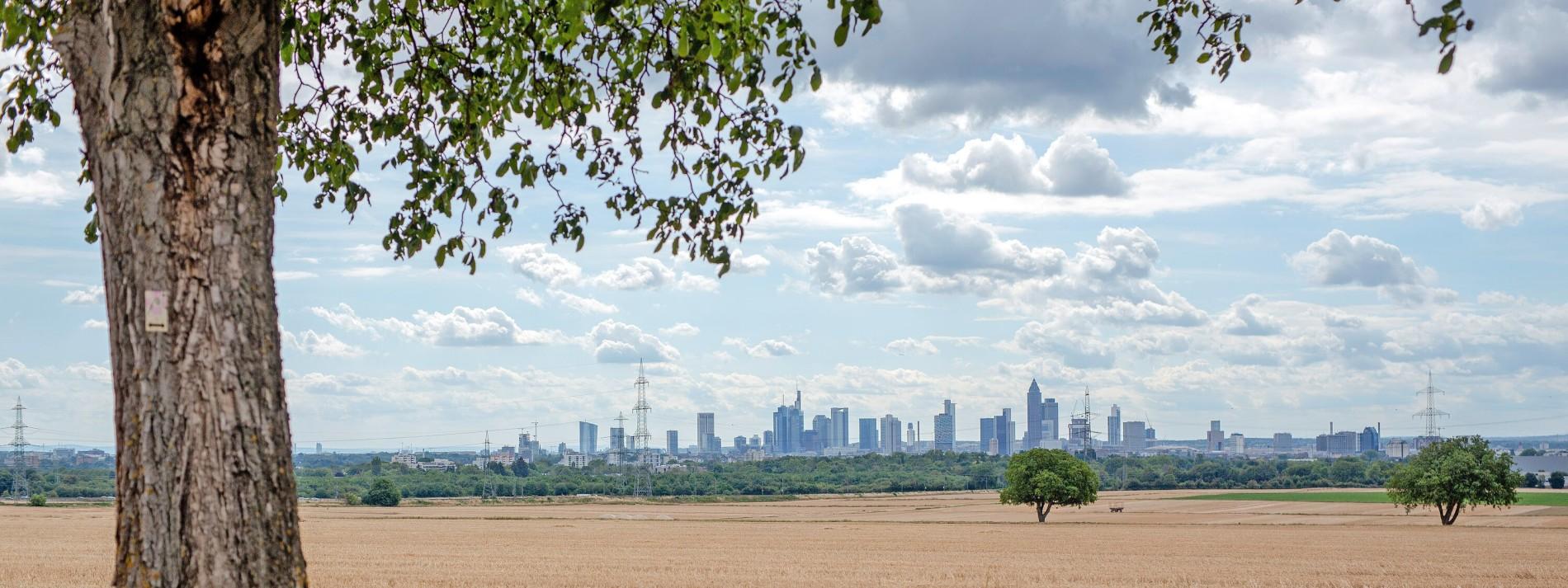Frankfurt hofft auf Geldwäschebehörde