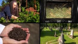Leichen als Kompost