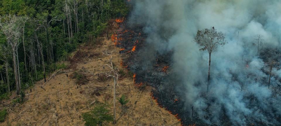 Dieses von Greenpeace Brasilien zur Verfügung gestellte Bild zeigt einen Brand nahe der Stadt Caneiras do Jamari in Rondonia.