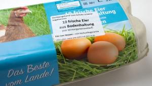 Freiland-Eier Mangelware