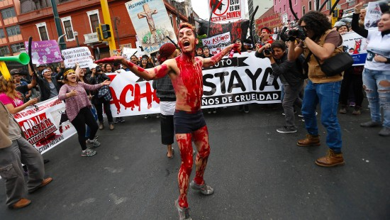Tierschützer protestieren gegen Stierkämpfe