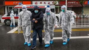 Frankreich organisiert Rückflug aller Franzosen aus Wuhan