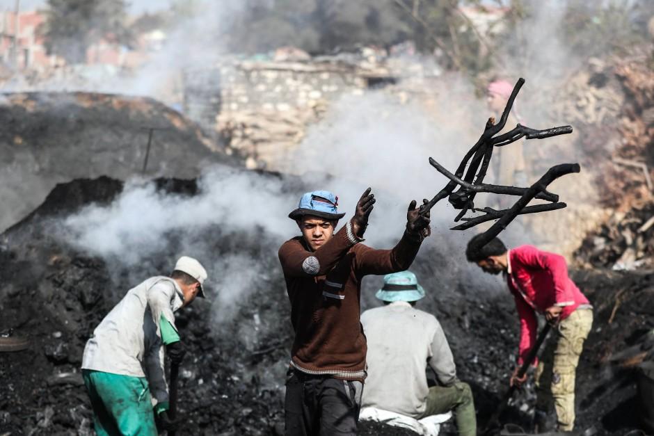 Die Köhler trennen die schon klein gewordenen Kohlestücke von widerspenstigen Ästen, die noch länger brennen müssen, bevor man sie verkaufen kann.