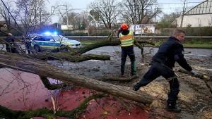 Waldspaziergänge auch nach Sturm lebensgefährlich