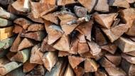 Rohstoff Holz: Der Stadtwald ist nicht nur Erholungsgebiet, sondern auch Wirtschaftswald. Mit dem Holz, auch mit Brennholz, verdient der Stadtforst Geld, rund eine Million Euro 2016.