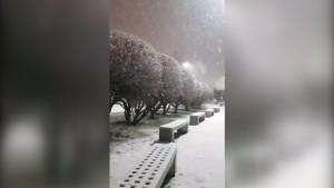 Argentinien liegt unter Schnee