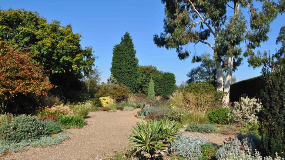 Beeindruckend: Mit ihrem Kiesgarten hat Beht Chatto gezeigt, was auch an einem trockenen Standort möglich ist