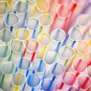Plastikverbot: Die nächste Grillsaison soll ohne Einwegplastik stattfinden