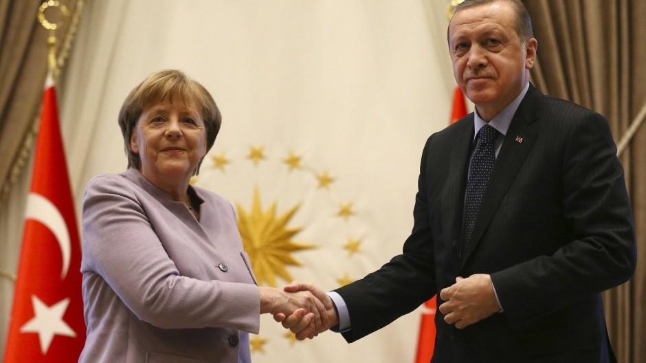 Grüne fordern von Merkel deutliche Worte