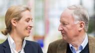 Ungleiches Spitzenduo führt AfD in den Bundestagswahlkampf
