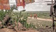 Rund 700 Millionen Menschen auf der Welt haben nicht genug zu essen. Besonders schlimm ist es derzeit auf der Insel Madagaskar, wo eine Dürre die Ernte vernichtet hat