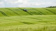 Unendliche Weiten in Brandenburg: Auf die Felder rieseln die EU-Subventionen.