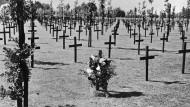 Gefallenengräber: Soldatenfriedhof in Langemarck im Jahr 1934