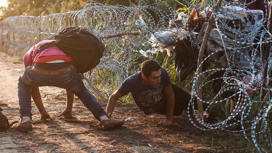 Menschen auf der Flucht: Zwei junge Männer durchbrechen im August die serbisch-ungarische Grenze bei Röszke.