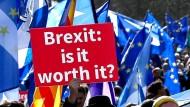 Für wen lohnt sich der Brexit?: Ein Demonstrant in Edinburgh stellt sich die Frage. Wiesbaden würde von seiner Nähe zu Frankfurt profitieren.