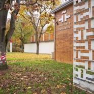 Fünfziger-Jahre-Architektur: Das Instituto Cervantes residiert im ehemaligen Amerika-Haus an der Staufenstraße.