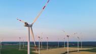 Noch stehen sie allein auf weiter Flur: Nach den Plänen der niedersächsischen Landesregierung sollen Windräder künftig auch in Wäldern stehen.