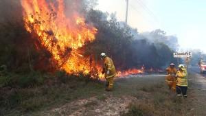 Hunderte Menschen fliehen vor Buschbränden