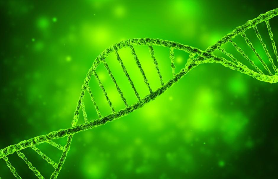 1953 erfand Watson gemeinsam mit Francis Crick das DNA-Doppelhelixmodell.