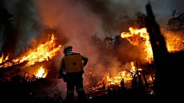Brasilianer kämpfen gegen die Flammen