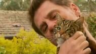 Katze rettet Besitzer vor Feuer