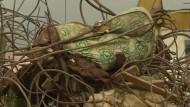 Dutzende Tote bei Einsturz eines Kirchen-Gebäudes in Nigeria